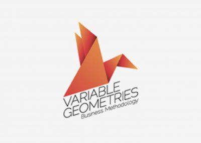Variable Geometries